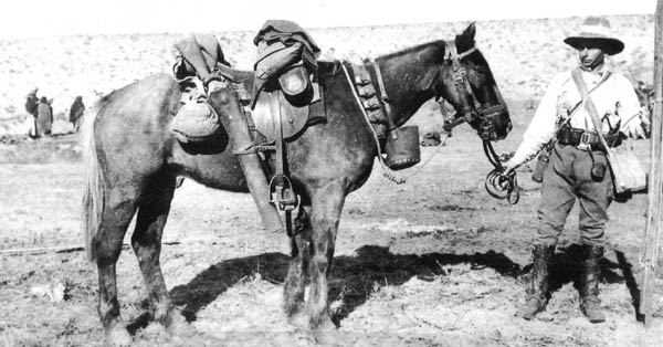Corporal Austin Edwards, his horse Taffy, and all equipment.Corporal Edwards was seriously wounded at the Battle of Romani. During the battle, Taffy stood still for his wounded rider to remount and escape.